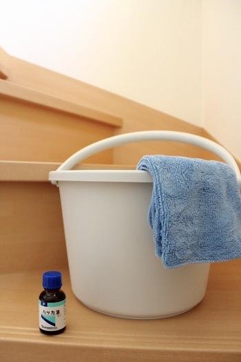 雑巾がけにはバケツの水に数滴ハッカ油を垂らします。清潔感のある香りに包まれるとお掃除も達成感がありますね。