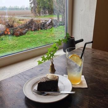 大きな窓の向こうには、ずっと眺めていたくなるような田園風景が広がります。カレーだけでなくスイーツやカフェメニューもあり、のんびりとした時間を過ごすのにおすすめです。