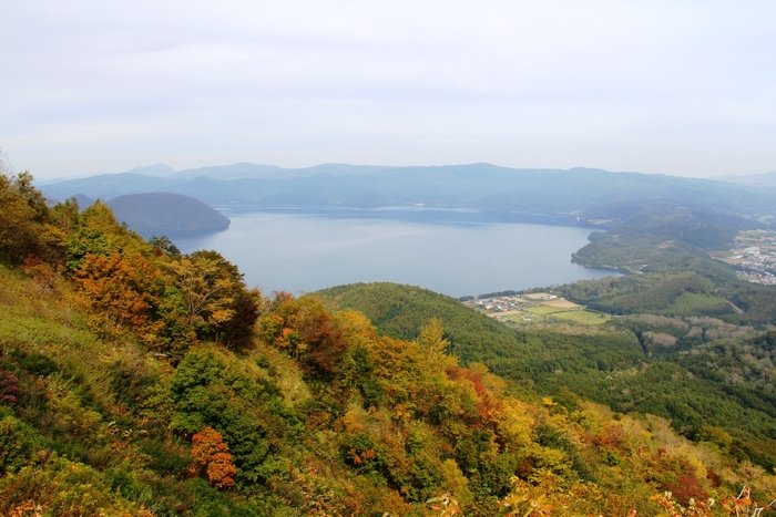 「洞爺湖(とうやこ)」は、周囲43kmという広大なカルデラ湖。10月上旬~11月上旬、湖畔一帯は広葉樹が見事に色づき、紅葉の名所としても定評があります。