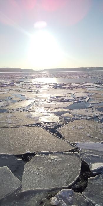 陸上からも接岸した流氷を楽しむことはできますが、ぜひ一度体験してみたいのが、「流氷クルージング」!  海上を埋め尽くす一面の流氷は、幻想的で、どこか畏れをも感じさせてくれます。シャッターチャンスを逃さずに!