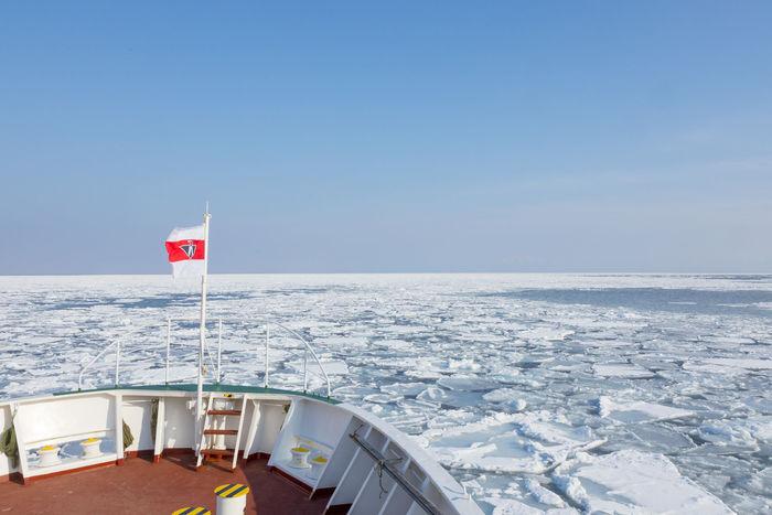 1月~3月の期間限定で楽しめるのが、「流氷」。  国内の流氷は、オホーツク海沿岸と太平洋の一部でしか目にすることができないそうです。