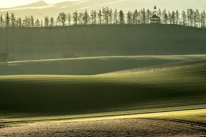 昼間は、緑が青々と輝く景色。早朝に訪れれば、静寂のなか、朝靄にかすむ幻想的な風景。夕刻なら、空がオレンジから紫色に染まる夕焼けも・・・。いつ訪れても、その季節、その時間ならではの、今だけの表情を楽しめますよ。   美瑛の丘の撮影スポットは、こちらだけではなく、他にも「クリスマスツリーの木」「ケンとメリーの木」「セブンスターの木」「親子の木」「マイルドセブンの丘」など・・。ぜひあわせて立ち寄ってみてくださいね。  ※有名な1本のポプラの木「哲学の木」は無くなっておりますので、ご注意ください。