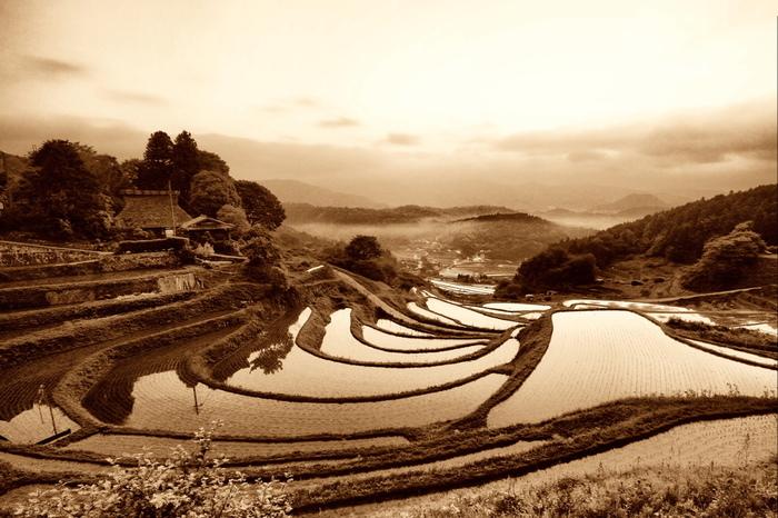 今や失われつつある日本の原風景とも言える、農村部の里山風景と棚田が織りなす景色はどこを切り取っても絵になり、思わずカメラに収めたくなるほどの美しさです。