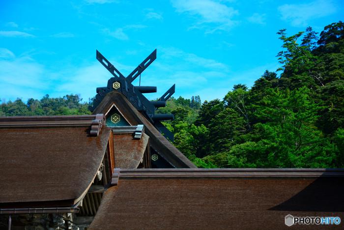 日本を代表する神聖な地として、古代から現代まで多くの人が参詣し続けている出雲大社。一般的な神社とは異なる伝統も持ち、古事記にも登場する神秘的なお社です。