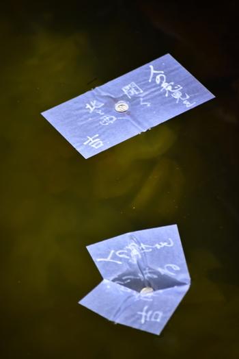 八重垣神社といえば、縁結び占いの「鏡の池」。稲田姫が八重垣の中で身を隠しているときに、この池の水を飲んだのだそう。 池に浮かべた紙に硬貨をのせ、沈む速さと沈んだ場所の遠さでご縁を占います。