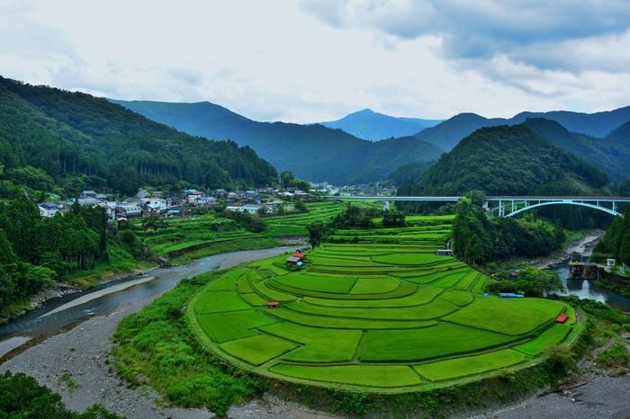 Ω(オメガ)状に湾曲した有田川沿岸に造られた独特の景観を持つ棚田・あらぎ島は、有田川町を代表する景勝地です。この地は、日本の棚田百選のほか、国の重要文化財にも指定されています。