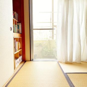 窓の汚れが気になる時は、網戸も同じくらい汚れているもの。窓と一緒にお掃除して、気持ちもサッパリしませんか?なんと道具を一切使わずに、とっても簡単な方法でキレイになるんです。