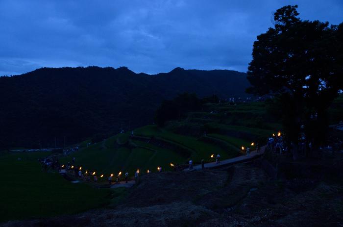 中山千枚田では毎年「中山虫送り」と呼ばれる行事が開催されます。中山虫送りとは、半夏生の日に松明をかざしながら棚田の畔を歩く豊作を願う伝統行事です。