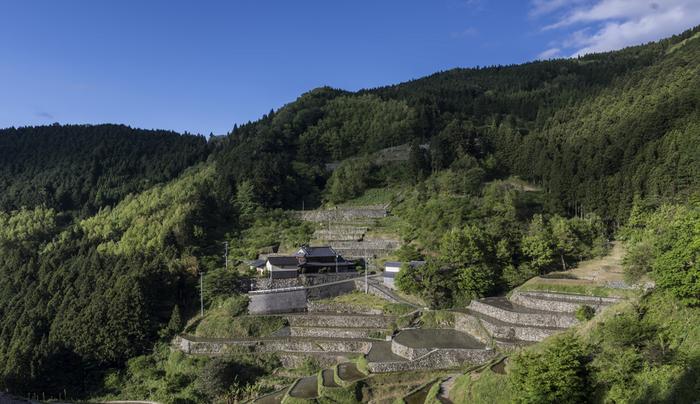 標高約470メートルの急斜面に95枚の水田が敷かれた泉谷の棚田は石積みの畔が特徴的な棚田です。一年を通じて流れ出る豊かな清水に恵まれた泉谷の棚田では、豊富なミネラルを含んだ最高級のお米が収穫されています。
