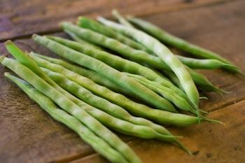 いんげんとインゲン豆をわざわざ分けて使うときがあります。基本的には同じものを指しますが、一般的にはさやごと丸ごとの状態で食べるものをいんげん、成長して固くなったさやは食べずに熟した豆だけを食べるものをインゲン豆と呼ぶといわれています。