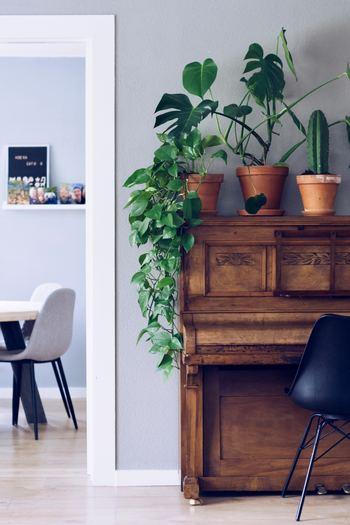 リビングや寝室の一角に間仕切りを設置し、ゆるやかに空間を区切れば、より「おこもり感」のある半個室として使えます。家族の気配を感じつつ、ひとりになれる時間と空間を手に入れたい方におすすめです。間仕切り家具を置くほかにも、観葉植物を並べたり、ロールスクリーンを取り付けたりする方法もあります。