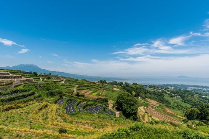 長崎県南島原市に位置する谷水棚田は、約4.5ヘクタールの耕作地に230枚の水田が敷かれている棚田です。ここでは、稲作のほかに馬鈴薯の栽培も行われており、雲仙普賢岳を背景に四季折々で異なる景観を臨むことができます。