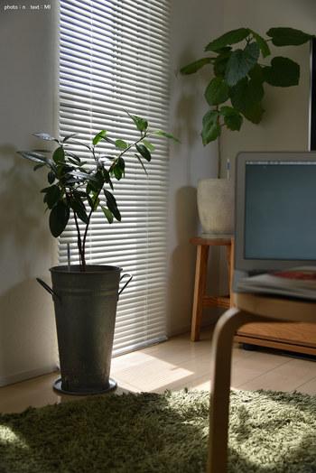 ロールスクリーンやウッドブラインドを使い、窓周りを軽くコンパクトに見せてみるのもおすすめです◎