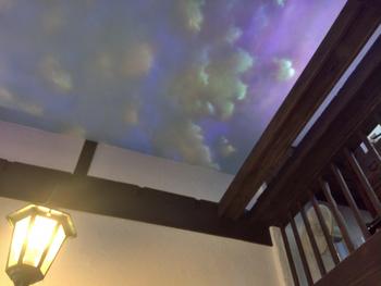 """店内にある""""街灯""""と、時間ごとに変わる天井は、ひそかな注目ポイント。シックな雰囲気の中に、ちょっとした遊び心。まさに大人向けのお店ですね。"""