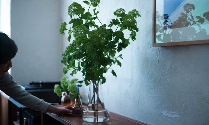 枝ものを生ける時は、高さのある花器を選んだ方が安定します。茎が太い枝ものは、切り口に十字に切り込みを入れ、立て込んだ枝や葉っぱをカットして水揚げを良くしましょう。画像のように大きなガラスの器にビバーナムをたっぷり生けると、お店のようなおしゃれなインテリアに。ボリュームが出すぎたら枝を間引いて、余った枝は小さな花器に飾ると良いですよ。また、吊るしておいてドライフラワーにしても素敵です。