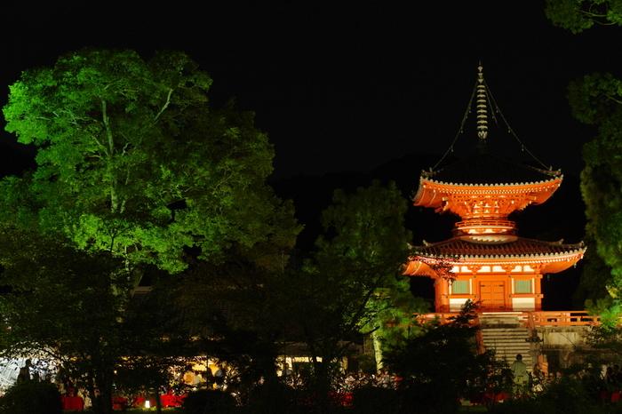 大覚寺境内では、多宝塔をはじめ、美しい和風庭園がライトアップされ、壮麗な姿へと変貌します。かつて嵯峨天皇の離宮であった大覚寺ならではの風流な秋の風物詩に参加し、平安貴族たちの雅な文化を垣間見てはいかがでしょうか。