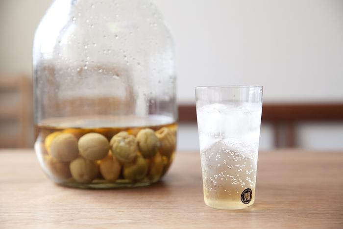 初夏になると八百屋さんに並び始める青梅。最近は「梅仕事」と言って、梅を漬けたり干したりする人も多いですよね。梅シロップを作っておけば、水や炭酸で割るだけで、お家で爽やかな梅ジュースを楽しむことができます。  画像は、青梅と氷砂糖とお酢に漬けたシロップ。仕上がりがまろやかになるので、りんご酢がおすすめだそう。初夏に仕込めば、真夏にはちょうど飲み頃になります。甘さ控えめで、爽やかな香りとさっぱり味が暑い季節にぴったりです。梅の酸味は食欲増進や疲労回復にも役立つそうですよ。  梅シロップは、梅を取り出し冷蔵庫で保管すれば、3〜4ヶ月は日持ちします。取り出した梅の実でジャムを作ってもいいですね。シロップはジュース以外にも、かき氷にかけたり、ゼリーにして食べることもできます。様々に活用できるのも嬉しいポイントです。