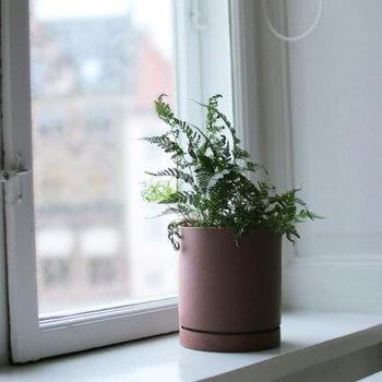 窓辺に置かれたプラントポットは、光と影の濃淡がとてもきれい。深みのある色合いだからこそ、感じられる陰影ですね。