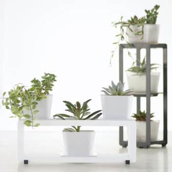 海外ではプラントポットというと、いわゆる植木鉢のことを指しますが、日本では植木鉢のほか、鉢カバーのことを指し示すこともあります。