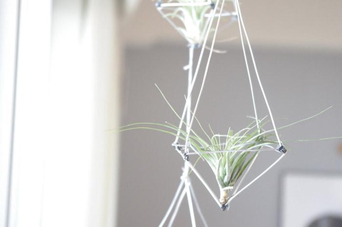 窓辺にインテリアグリーンを取り入れるなら、吊るして飾ってみてはいかがでしょう。土を必要としないエアープランツは、ハンギングタイプにぴったりです。
