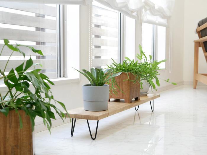 日当たりの良い窓辺は、インテリアグリーンの特等席。直置きはおしゃれですが、家事がしにくいなどお悩みもあるのではないでしょうか。そんな時には、ローシェルフを取り入れてみては。天然木とアイアンの組み合わせなら、クールでこなれたナチュラルインテリアをつくれます。