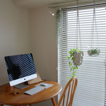 こちらのお宅では、ポトスとエアプランツのキセログラフィカを窓辺に。目線の高さにハンギングされているため、水やりも楽にできますね。