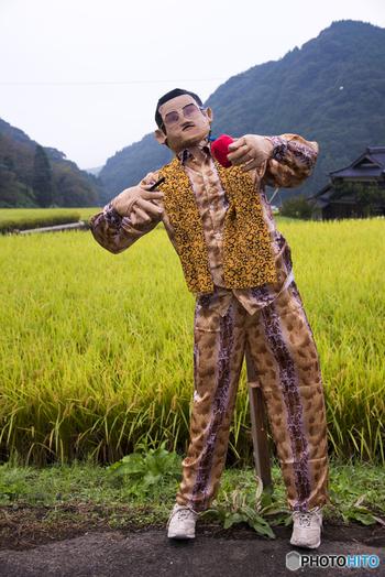 鬼木棚田では9月になると「鬼木棚田まつり」が開催され、100体を超えるユニークな案山子が棚田に出現します。