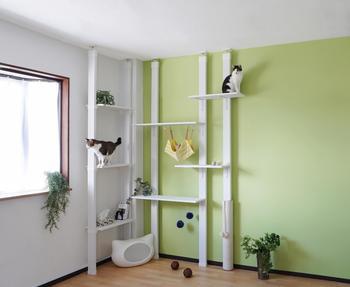 天井まで突っ張れるのを利用して、キャットタワーを作ることも可能です。お好みの段差を作って、ハンモックや爪とぎを設置したら、猫たちの遊び場の完成です。