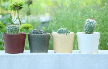 白、黄、炭、茶というシックなカラーバリエーション。四つ並べて同じ植物を育ててみるのも素敵です。