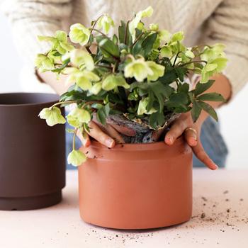 じっくり選んだお花やグリーンたちは、お花屋さんで買ったポットのままではちょっぴりかわいそう。素敵なプラントポットでおめかししてあげましょう。