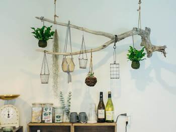 麻紐で吊るして流木をディスプレイ。空間を上手に使った見せ方がとってもお洒落ですね!二股に分かれた枝に、ハンギングプランターや、お気に入りの雑貨などを吊るして…。
