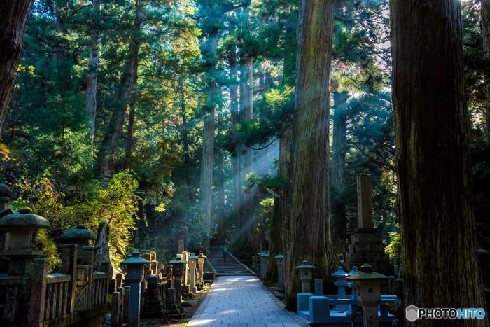 悠久の時間を刻み続けてきた巨大な杉に囲まれた高野山・奥の院は日中でも薄暗く、深山幽谷とした雰囲気を漂わせています。山奥にひっそりと佇む荘厳で静謐な聖域、高野山を訪れ、幽玄閑寂とした世界を垣間見てみましょう。