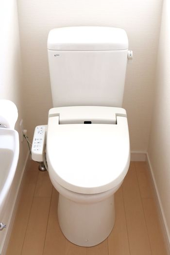 便座や床は普段からキレイに掃除していても、意外と忘れてしまうのがトイレのタンクと蓋の間の部分。届きにくい場所でもあるので、細いブラシなどを使って念入りに掃除する必要があります。