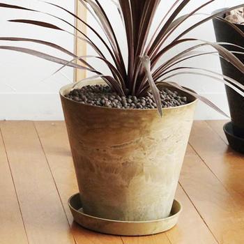鉢の底に貯水部があり、根腐れを防ぎ、適量の水やりを可能にしてくれるという優れもののプラントポットです。ナチュラルでグリーンたちとの相性もばっちりです。