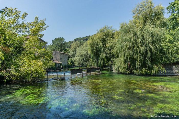 豊かな水量を誇るソルグ川の透明度は抜群です。日射しを浴びてキラキラと輝く水面を覗き込んでみましょう。川底を覆う緑の水草がゆらゆらと揺らめき、緑の樹々に覆われたソルグ川の美しさを引き立てています。
