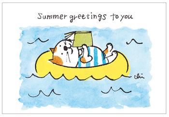 ゆるい表情がなんとも愛らしいネコのポストカード♪1セットに5種類入っていて、どれもネコたちが夏を満喫しています。眺めているだけで癒されますよ。