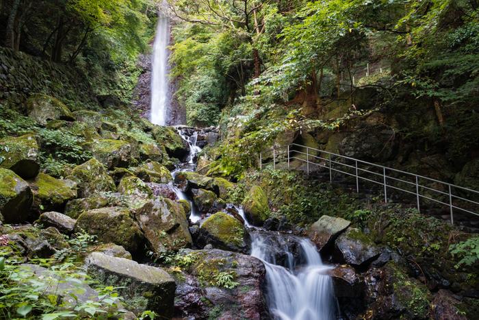 養老の滝は、岐阜県養老郡養老町にある落差32m、幅4mの滝。滝は養老公園内にあり、季節ごとに美しい表情を見せてくれます。勢いよく流れる滝と言うよりは、どこか柔らかな水の流れで、眺めているだけで心を癒してくれます。暑くなるこれからの季節は、涼を求めて訪れたくなる、まさに癒しのオアシスです。