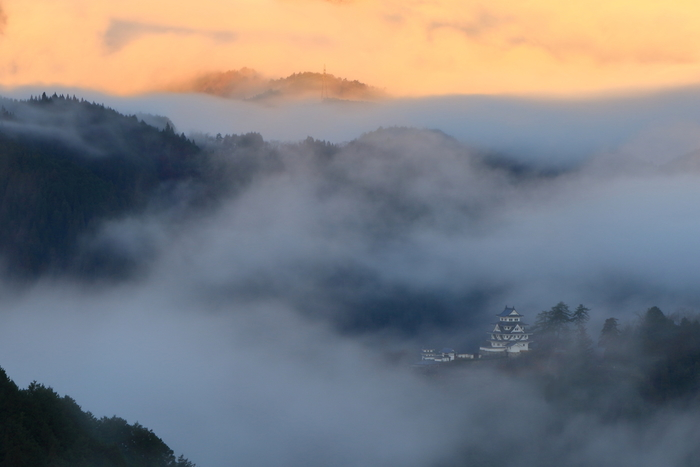 緑に囲まれ、四季折々に違った表情を見せてくれる「郡上八幡城」。その中でも、いくつかの条件がそろった時にしか見ることのできない幻想的な光景があります。それが、朝靄の中に静かにたたずむ天守閣の様子。立ち込める霧の中に浮かんだその様子は、まるで「天空の城」ようです。