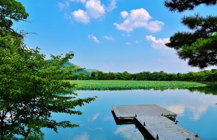 大覚寺は時代劇のロケ地として有名な太秦のほど近い場所にあり、境内はどの一角をとっても絵になります。そのため、ここでは映画やテレビドラマなどの撮影が行われたこともあります。