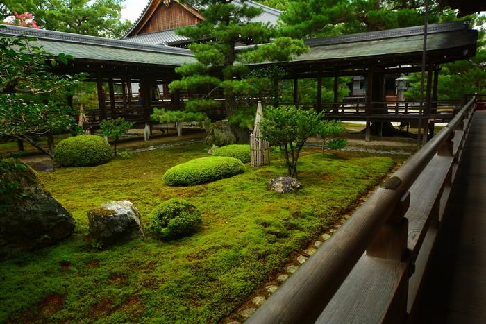 宸殿の廊下からは苔が敷かれた美しい庭園を臨むことができます。庭園と、庭を取り囲む村雨の廊下が見事に融和し、宸殿から庭を眺めていると大覚寺が建立された平安時代初期にタイムスリップしたかのような気分を味わうことができます。