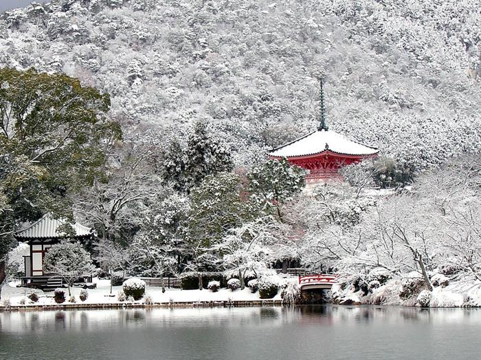 年間を通じて美しい景色を見せてくれる大沢池ですが、雪化粧した風景の美しさは傑出しています。真っ白な雪が境内の樹々、歴史的建築物をうっすらと覆い、その様子を鏡のように池の水面が映し出す様は幻想的で、寒さを忘れていつまでも眺めていたくなるほどです。