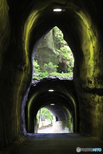 SNSで話題の「2階建てトンネル」もぜひ訪れてみましょう。全長115mの向山トンネルは元々、上部の出口だけを使用していましたが、接続する道路への利便性を考え道を掘り下げて下にもトンネルを作ったそうで、その際に埋め戻さなかったためこのような構造になりました。こちらもひんやり気持ち良いスポットですよ。