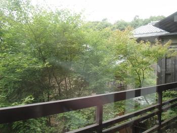 春は桜、秋は紅葉。季節の移り変わりを楽しみながら、京都の風情を感じられる絶好のお散歩コースが、銀閣寺から南禅寺に続く哲学の道です。