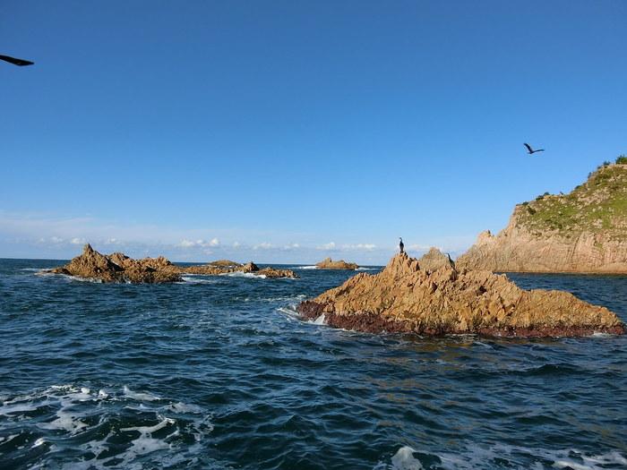 「島巡り遊覧船」というネーミングのとおり、遊覧船で海をすすむと、いろんな島を目にすることができます。 小さな島が5つ並んでいる菜種五島、黒島、そしてリアス式海岸・・・。マイクを持った船長さんのガイドが聞こえてくるので、なにも知らなくても、浦富海岸の景観の魅力にじっくり浸れますよ。