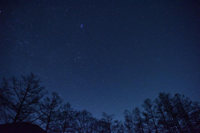 夜になると戦場ヶ原では満天の星々が煌めきます。夜闇に無数の星が輝く様は、まるで紺碧のベルベットに宝石をちりばめたかのような美しさです。