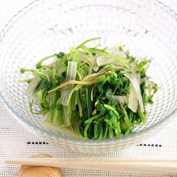 食物繊維やビタミンが豊富に含まれる野菜は、日常的に摂取したい食材。  三杯酢を使えば、野菜レシピの幅が広がります。湯通ししたにんじんの葉を三杯酢とあわせたシンプルな酢の物レシピ。スライスした蕗(ふき)とゴマを加えて、まろやかな味わいに仕上げています。