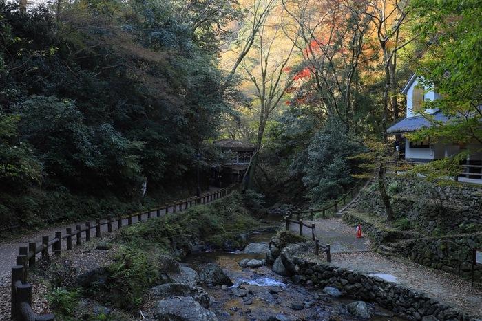 滝と紅葉で有名な箕面公園は、総面積83.8ヘクタールの広大な公園で、「明治の森箕面国定公園」の一部に属しています。大阪市内中心部から電車でも簡単にアクセスできることから、年間を通じて大勢の人々で賑わっています。