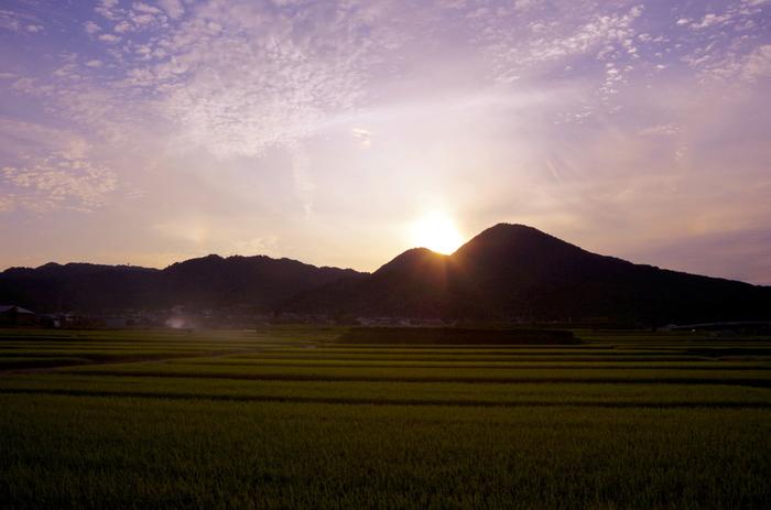 二つの頂上(標高517メートルの雄岳、標高474メートルの雌岳)の間に夕陽が沈む二上山は、古くから聖なる山として崇められてきました。時間に余裕があれば、ぜひ、二上山へ沈みゆく夕陽を眺めてみてください。美しい稜線と夕焼け色に染まった空が織りなす景色は絶景そのものです。