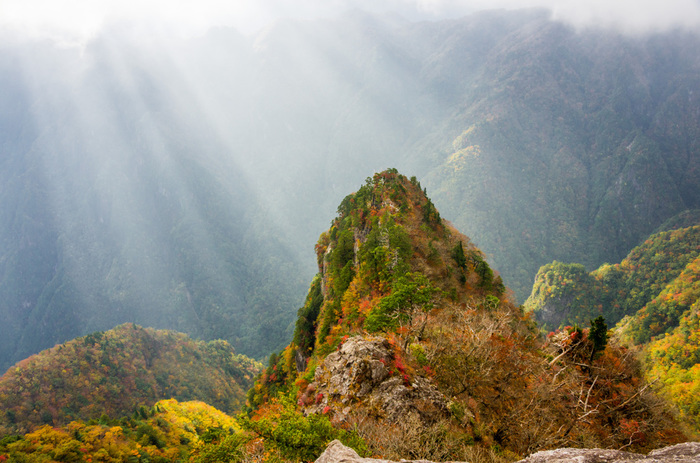 山全体が特別天然記念物に指定されている大台ケ原山は、奈良県と三重県の県境に位置する標高1695.1メートルの山です。この山は、「日本百名山」「日本百景」「日本の秘境100選」にも選定されている近畿地方有数の景勝地です。