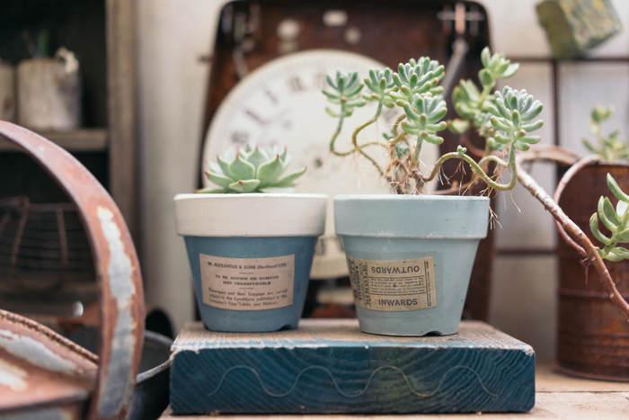 植木鉢をペイントしてラベルを貼った簡単DIY。ちょっとのアレンジでオリジナリティ溢れる姿に変身します。淡いブルーが多肉植物とナチュラルにマッチしていますね。